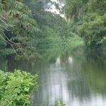 El Jamapa, 386 kilómetros de agua para la vida